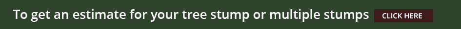 tree-stumps-estimate