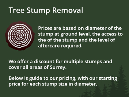 tree-stumps-removal-info